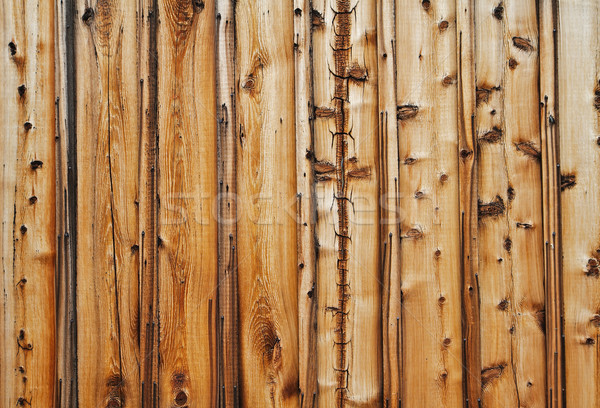 Knotty wood wall Stock photo © bobkeenan