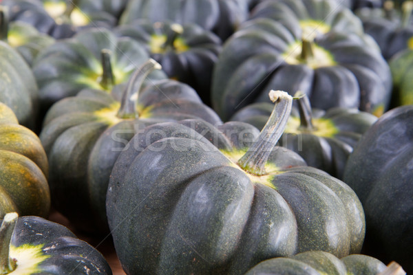 Blue Green Squash Stock photo © bobkeenan