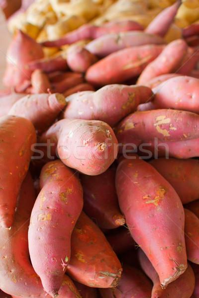 Pile of Sweet Potatoes Stock photo © bobkeenan