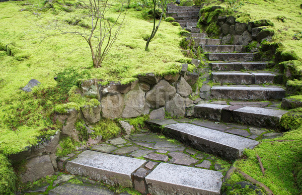 Jardin pierre escaliers croissant vert mousse Photo stock © bobkeenan