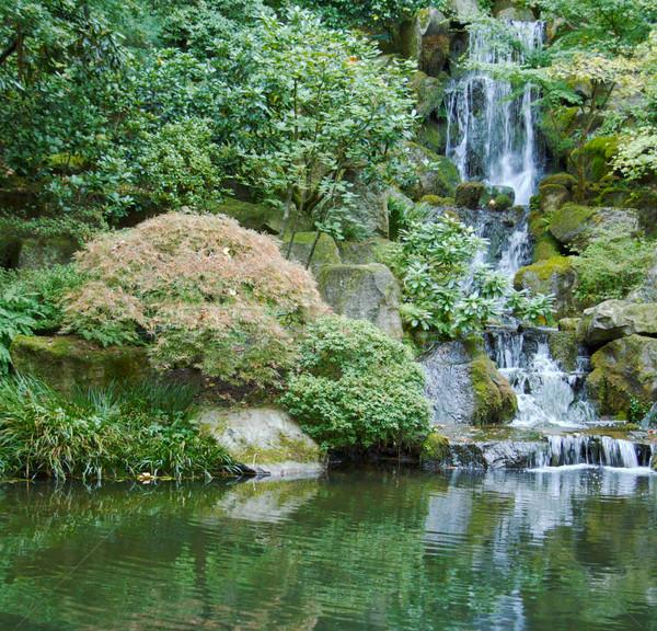 Japoński ogród wodospad zielone staw wody Zdjęcia stock © bobkeenan