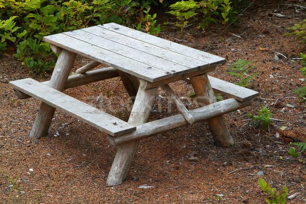 Bank klein hout picknicktafel groene loof Stockfoto © bobkeenan