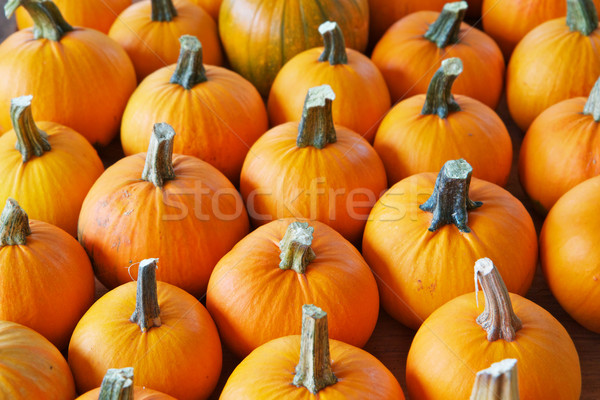 Pompoenen oranje boeren markt natuur Stockfoto © bobkeenan