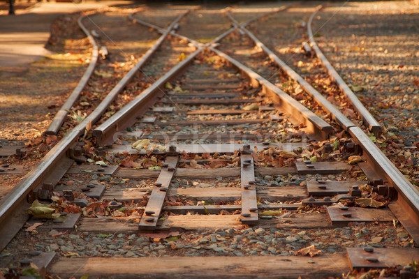 Close up railroad tracks switch Stock photo © bobkeenan