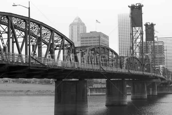 туманный моста день мнение реке Сток-фото © bobkeenan