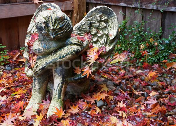 Jesienią anioł pogoda ceramiczne cherub Zdjęcia stock © bobkeenan