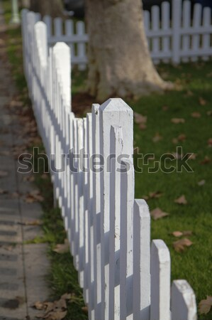 Dimishing White picket fence Stock photo © bobkeenan