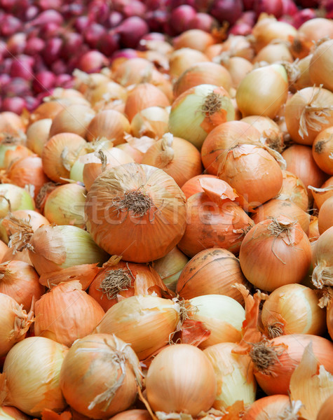 Yellow and red onion pile vertical Stock photo © bobkeenan