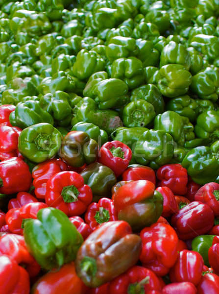 Rood groene paprika groot boeren Stockfoto © bobkeenan