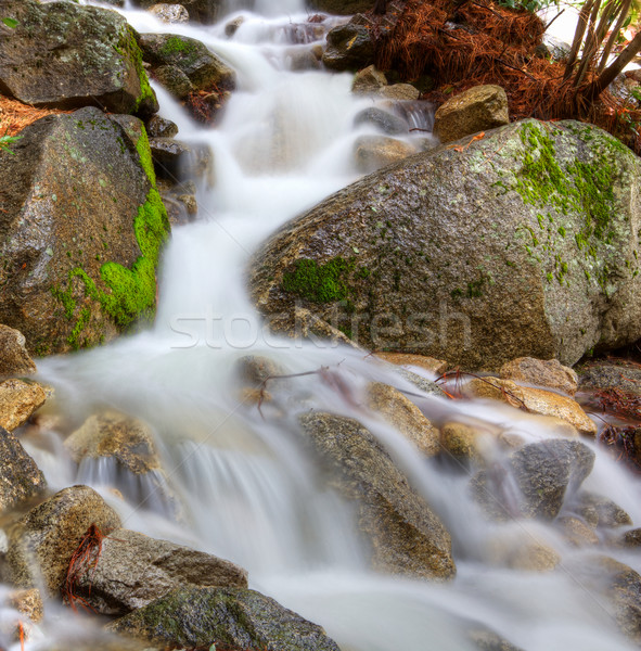 Frothy mountain stream Stock photo © bobkeenan