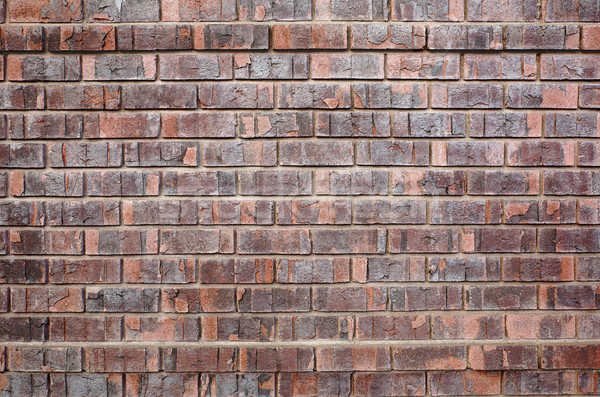 Another Red Brick Wall Stock photo © bobkeenan