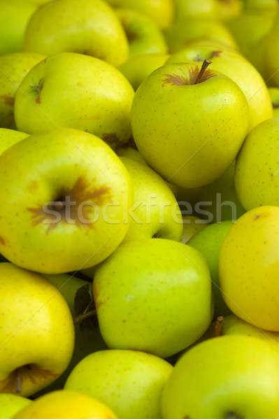 Goldent Delicious Apples Stock photo © bobkeenan