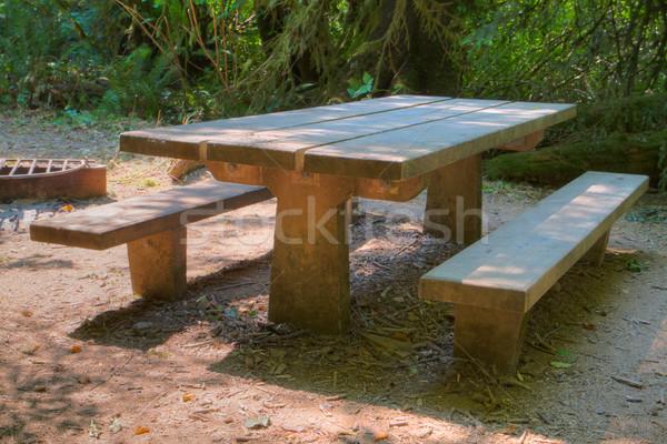 Hdr piknik asztal fák fa tájkép kert Stock fotó © bobkeenan