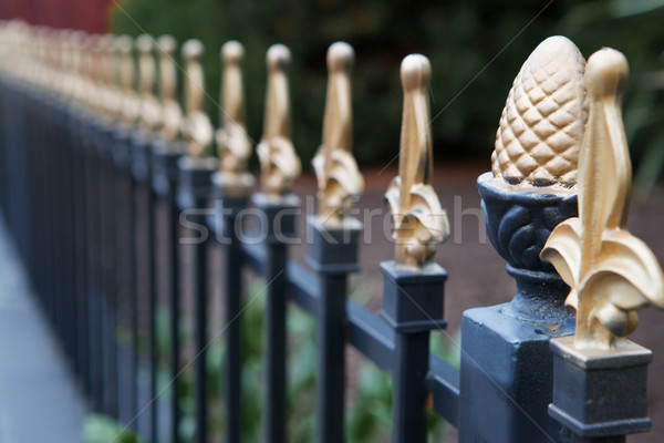 Gold tipped iron fence Stock photo © bobkeenan