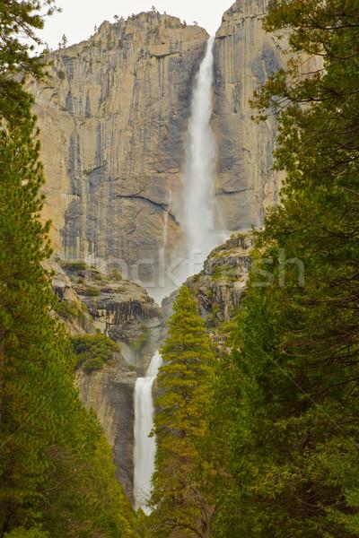 Upper and Lower Yosemite Falls Stock photo © bobkeenan