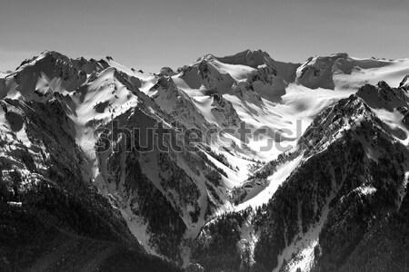 Olympic Mountains BW Stock photo © bobkeenan