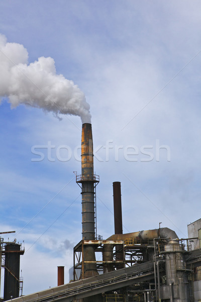 Smoke stack blue sky vertical Stock photo © bobkeenan
