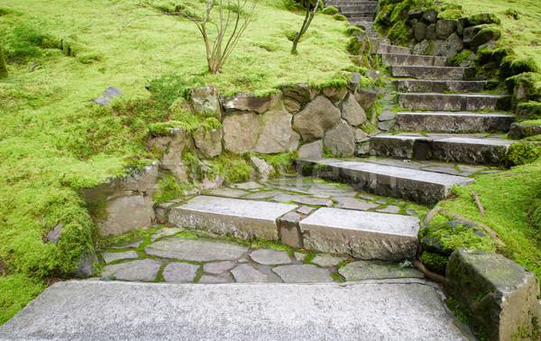 Curving stone stairway Stock photo © bobkeenan