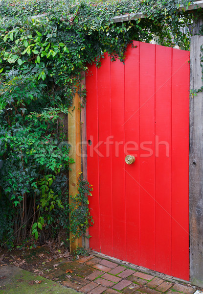 Rood hek deur geschilderd messing Stockfoto © bobkeenan