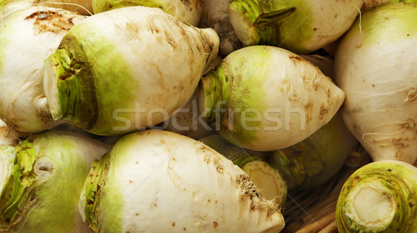 Green and white turnips Stock photo © bobkeenan