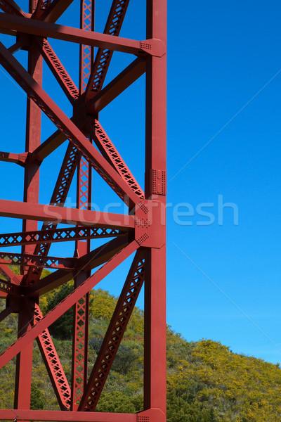 Golden Gate Bridge Support Stock photo © bobkeenan