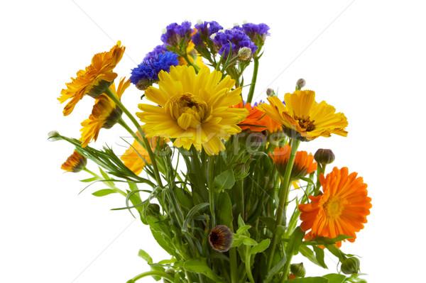 Bukiet żółty pomarańczowy niebieski kwiaty Zdjęcia stock © bobkeenan