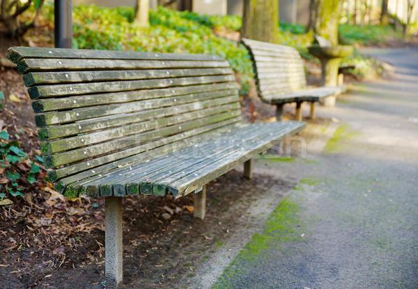 Park Bench perspective Stock photo © bobkeenan
