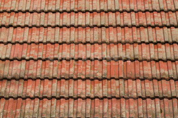 赤 タイル 屋根 太陽 テクスチャ 建物 ストックフォト © bobkeenan