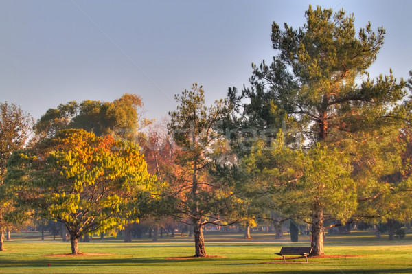 ゴルフコース 菜 ベンチ hdr 早朝 高い ストックフォト © bobkeenan