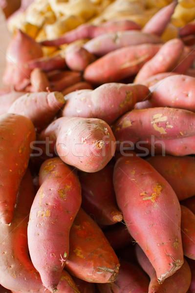 Słodkie ziemniaki duży pomarańczowy złoty Zdjęcia stock © bobkeenan