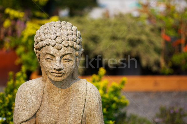 Shallow focus Buddha garden Stock photo © bobkeenan