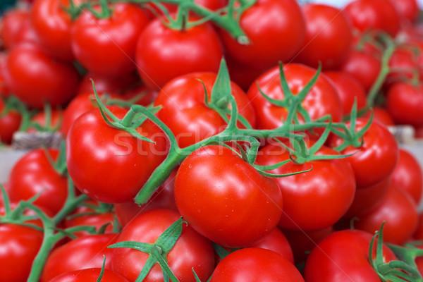 Wijnstok Rood tomaten heldere groene Stockfoto © bobkeenan
