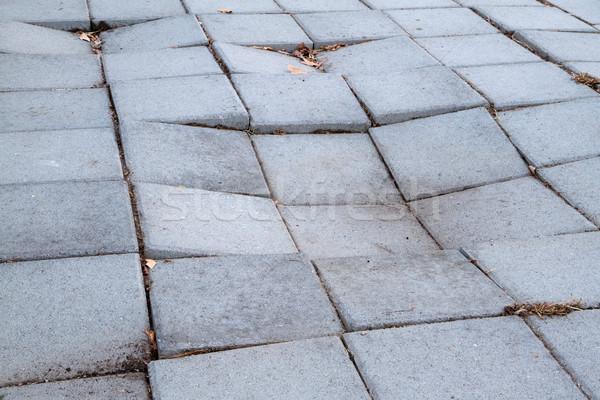 Acera concretas cuadros fregadero textura Foto stock © bobkeenan