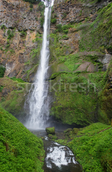 Long thin water fall Stock photo © bobkeenan
