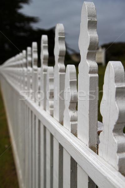 Clôture blanche soft accent Photo stock © bobkeenan