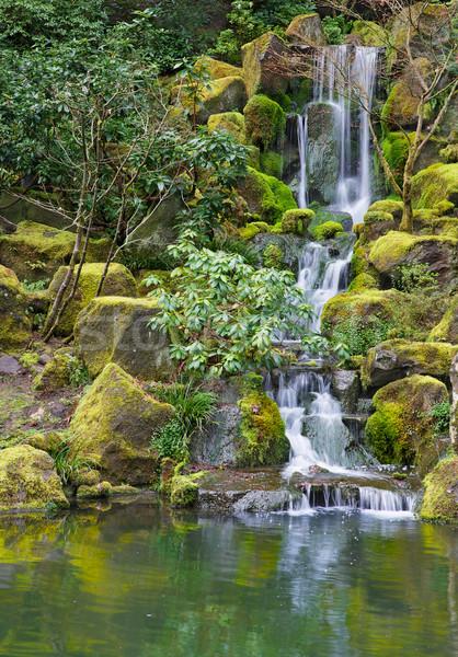 Longtemps jardin cascade mousse couvert vert Photo stock © bobkeenan