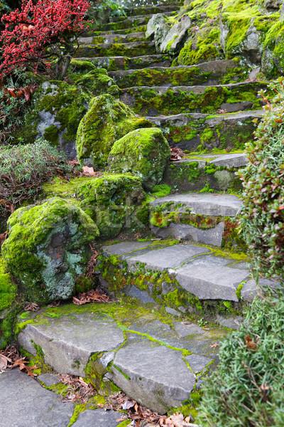 Curvy stone staricase Stock photo © bobkeenan