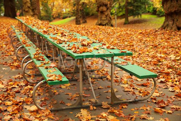 Lang najaar picknicktafel groene gedekt vallen Stockfoto © bobkeenan