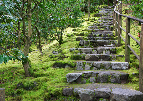Asian Garden Stone staircase Stock photo © bobkeenan