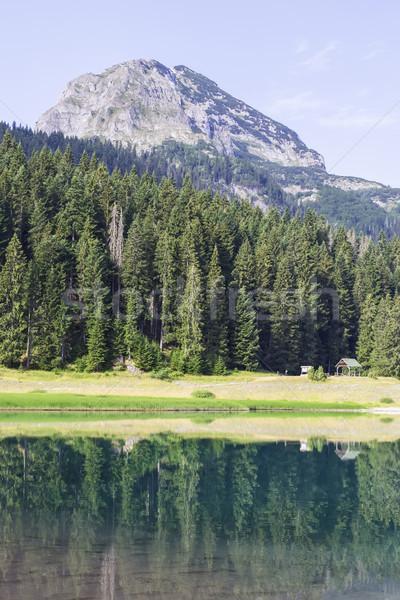 Black Lake on Durmitor Mountain in Montenegro Stock photo © boggy