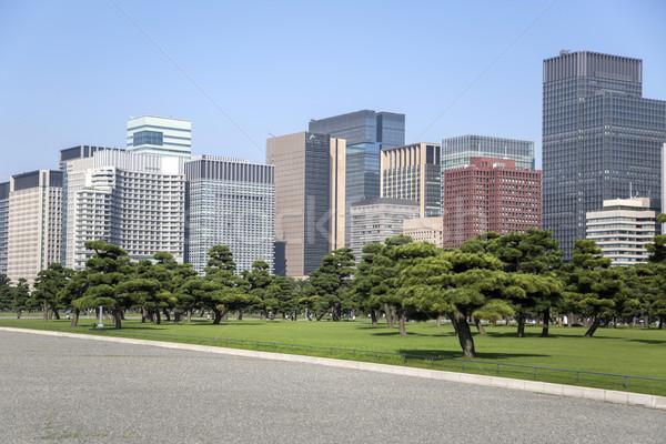 Foto d'archivio: Bella · verde · parco · giardino · Giappone