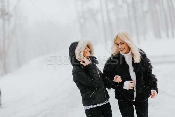 Открытый первый снега портрет женщины Сток-фото © boggy