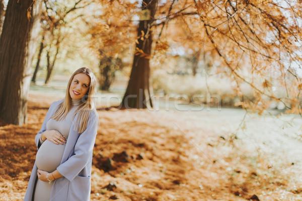 Stockfoto: Mooie · zwangere · vrouw · buitenshuis · baby · gelukkig · zwangerschap
