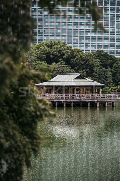 Té casa Tokio Japón lago agua Foto stock © boggy