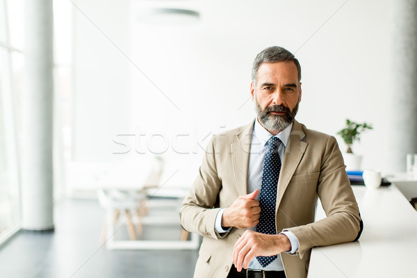 Bearded handsome middle-aged businessman in office Stock photo © boggy