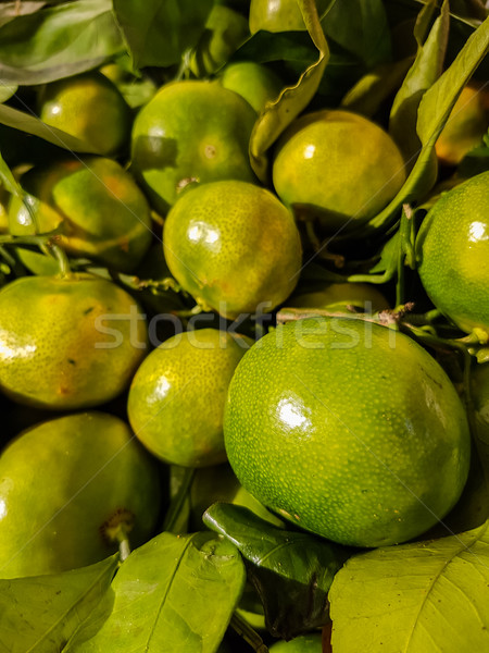 Green mandarin Stock photo © boggy