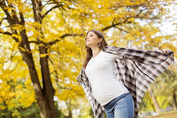 Stockfoto: Jonge · zwangere · vrouw · najaar · park · boom · gezicht