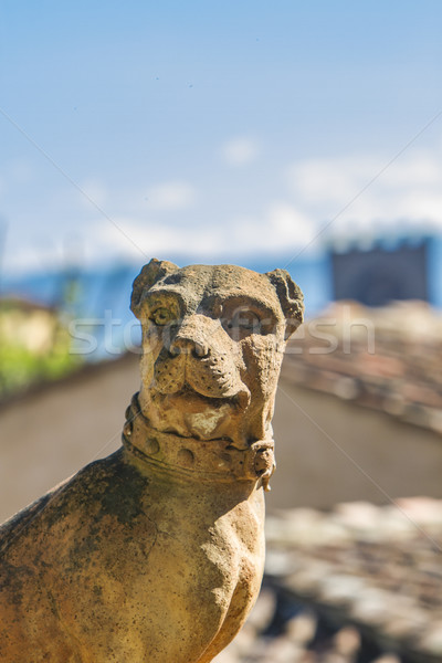 Florence kutya szobor Olaszország kert művészet Stock fotó © boggy