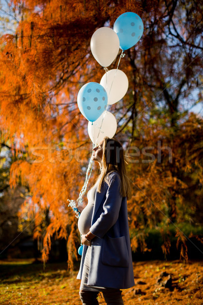 Foto d'archivio: Giovani · donna · incinta · autunno · parco · palloncini · mano