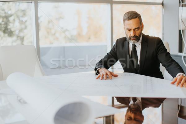 Przystojny w średnim wieku biznesmen patrząc plany nowoczesne Zdjęcia stock © boggy